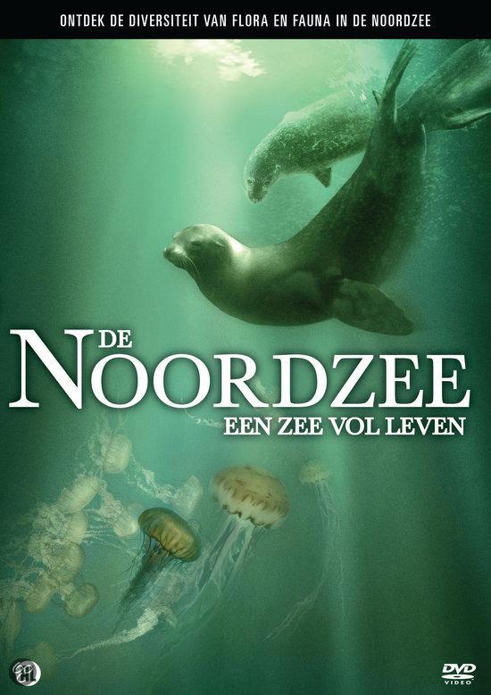nieuwste tijd film noordzee zee leven