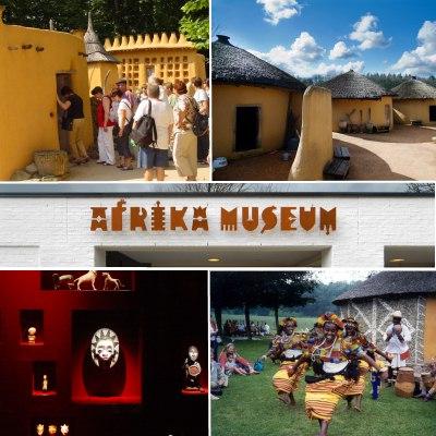 egyptenaren musea afrika